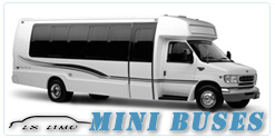 Louisville Mini Bus rental